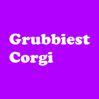 The Grubbiest Corgi